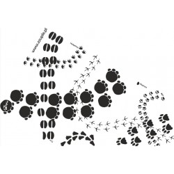 Footprints - mata sensoryczna 50cm*250cm