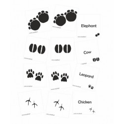 Footprints mata 50cm*250cm & tafle